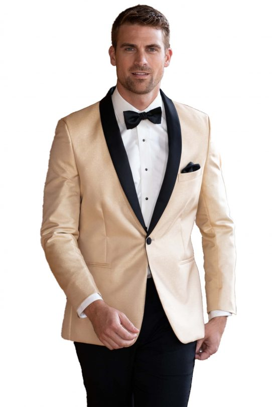 All Styles Gold Lame by MOD