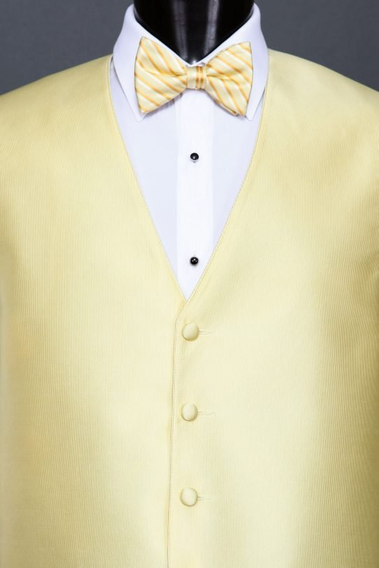 Canary Reflections Vest