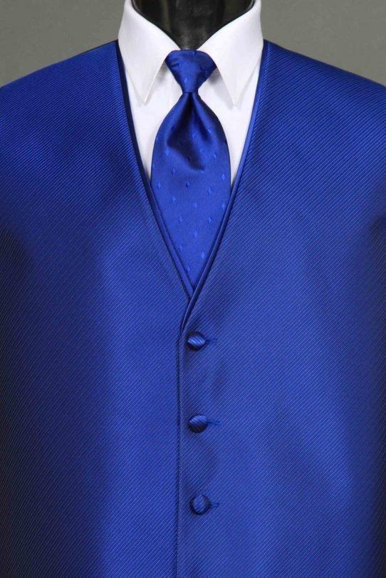 Vests Cobalt Synergy Vest